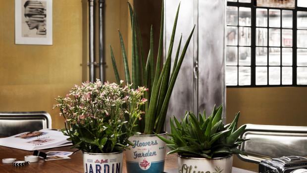 Scheurich, Keramik-Übertöpfe Retro Garden