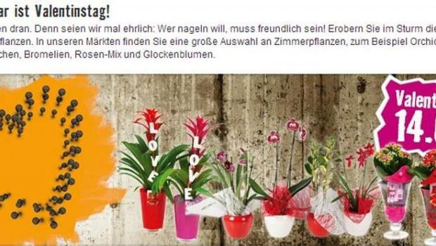 Die Valentisntag-Werbung von Hornbach in Österreich sorgte für harsche Reaktionen.