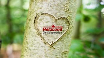 Holzland legt um 8,2 Prozent zu