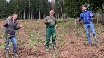 Soendgen-Team pflanzte 50 Bäume