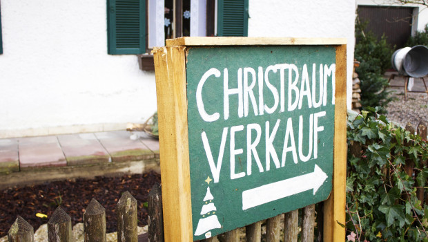 Weihnachten kann kommen: Es gibt genügend Weihnachtsbäume, versichern die Erzeugerverbände. Bild: Pixabay/Hannah Alkadi