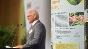 Greenpeace befragt Baumärkte zu Glyphosat und Bienenschutz