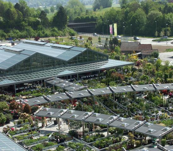 Das Gartencenter Meier in Dürnten am Zürichsee gilt vielen in der Branche als Vorbild.