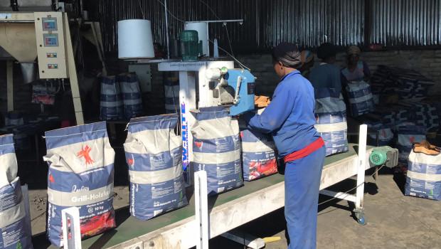 Die DHG will zusammen mit der GIZ in Namibia ein Schulungszentrum für die Holzkohle- und Brikettproduktion aufbauen.