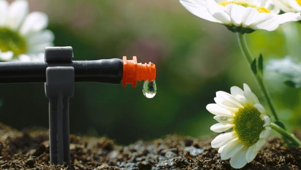 Wie man richtig bewässert und Wasser spart, erklärt Gardena auf seiner Website.