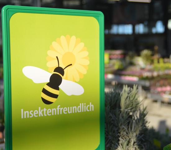 Insektenfreundlichkeit ist das große Thema bei den Gartenpflanzen.