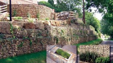 Dekorativer Gartenbau