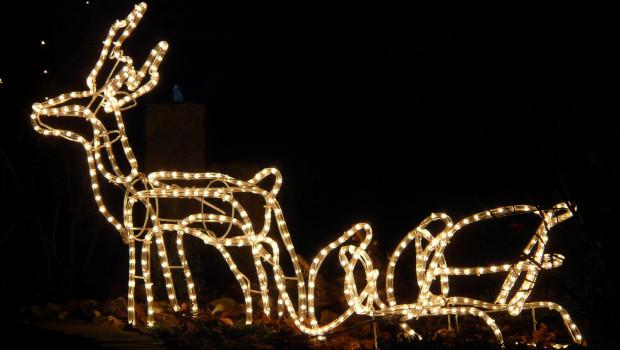 Laut einer aktuellen Umfrage weiß ein Drittel der Deutschen nicht, wo Lichterketten fachgerecht zu entsorgen sind. [Bild: pixabay / Hans]