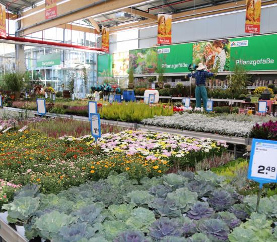 Aufgeräumt hat das Team Garten auch im Düngerregal, um die Eigenmarke zu stärken und Produktgruppen zusammenzuführen. Mit den Lieferanten Ziegler, Compo und Neudorff werden Vorgaben für eine abgestimmte Markenwelt und eine optimale Flächennutzung erarbeitet.