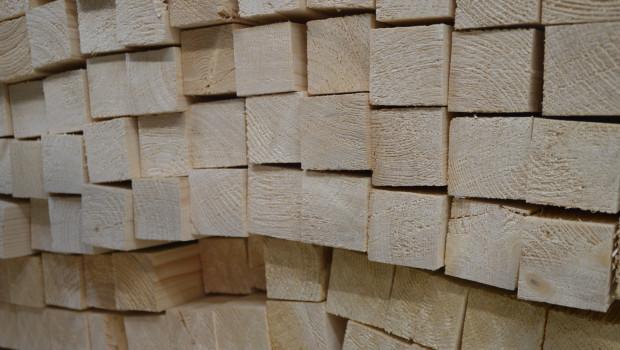 Importholz ist im Juli um durchschnittlich 57 Prozent teurer geworden, so Destatis.