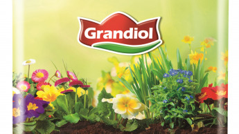 Blumen- und Pflanzensortiment von Lidl wird torffrei