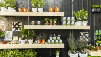 Konzepte zur Verkaufsförderung im grünen Einzelhandel