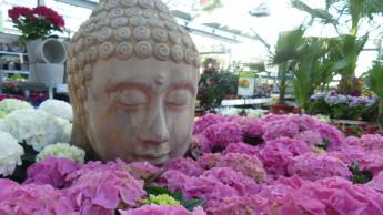 Relevanz von Bau- und Gartenmärkten: Werkeln gegen den Lockdown-Frust