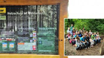 Kommunikationsidee des Jahres: Holzschutz ist Waldschutz