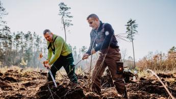 NBB-Partner werden Baumpaten