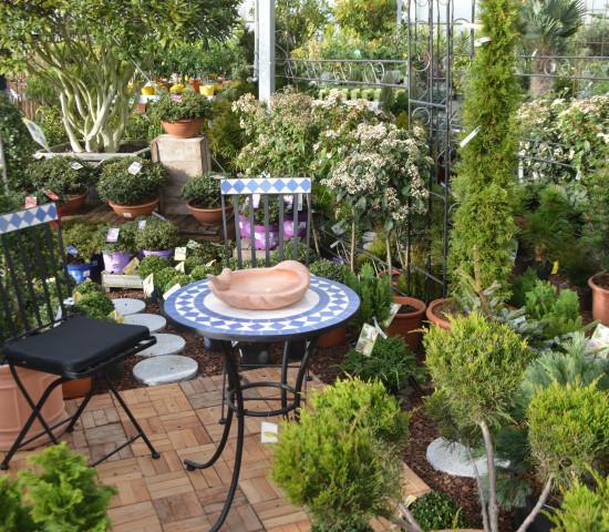 Gartenmöbel aus Metall haben an Beliebtheit gewonnen.