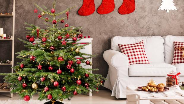 Fleurop liefert in diesem jahr fertig dekorierte Weihnachtsbäume nach Hause.