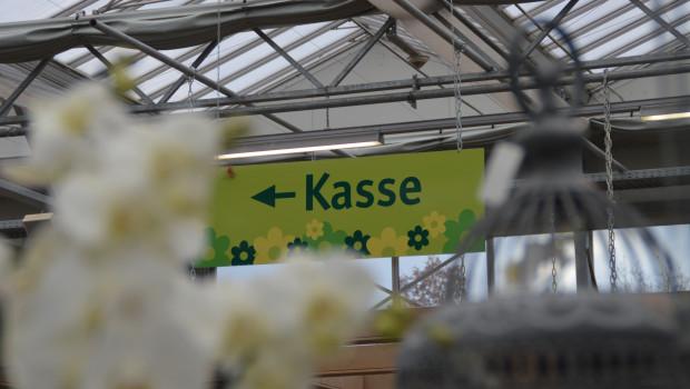 Die Umsätze im Gartenhandel sind im vergangenen Jahr real um kaum mehr als ein Prozent gestiegen, hat Destatis auf der Grundlage vorläufiger Zahlen ermittelt.