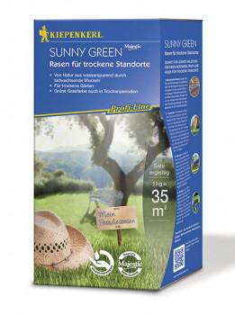 Nebelung, Kiepenkerl-Rasenmischung, Sunny Green