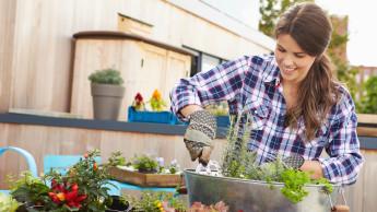 Mehrheit der Gartenbesitzer begrüßt torffreie Erden