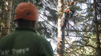 Toom Baumarkt und Fair Tree unterstützen Erntehelfer