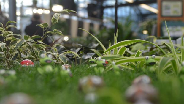 Die erste Gartencenter dürfen wieder öffnen, nun mehren sich die Hoffnungen auf eine baldige Öffnung des gesamten Einzelhandels.