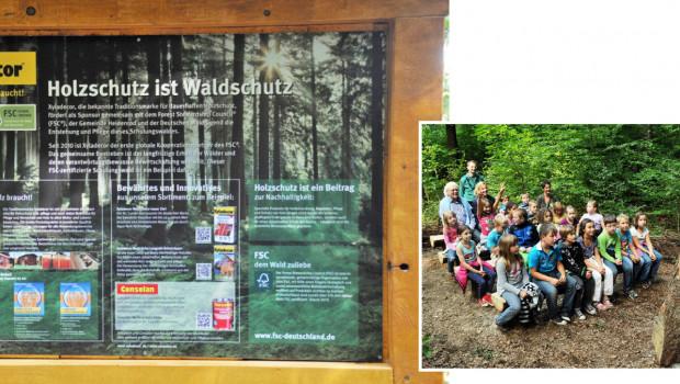 Xyladecor Holzschutz ist Waldschutz
