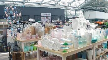 Fachhandel im Einzelhandel