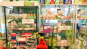 Stiftung fordert strengere Regeln für Pflanzenschutz in Hausgärten