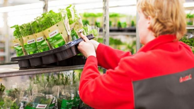Toom wird ab 2020 als erstes Handelsunternehmen das Mehrweg-Pflanzenpaletten-System Floritray testen. [Bild: Toom]