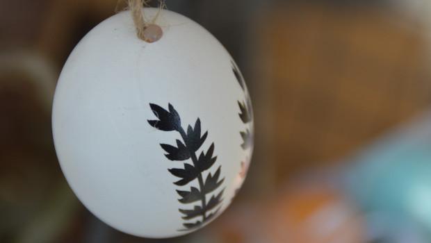 Das diy-Team wünscht auch - und gerade - in dieser eher schwierigen Zeit: Frohe Ostern!