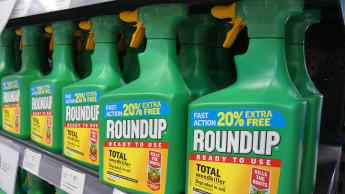 Glyphosat-Verbot im Garten mit Einschränkungen in Kraft