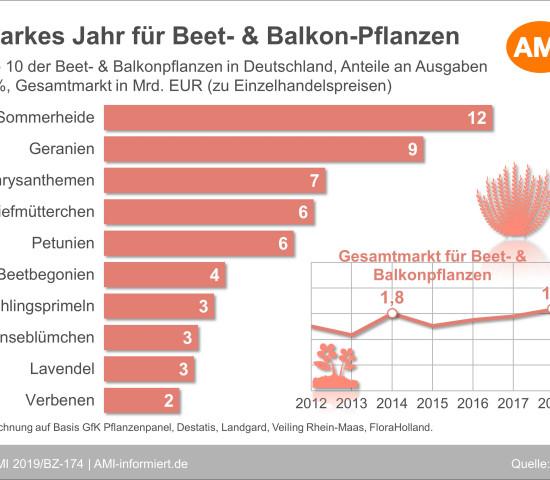 Die Top 10 bei Beet und Balkon.