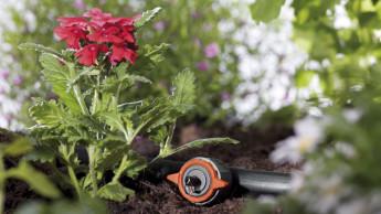 Gesündere Pflanzen durch automatische Bewässerung