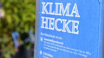 40 m Hecke = 2 km Auto