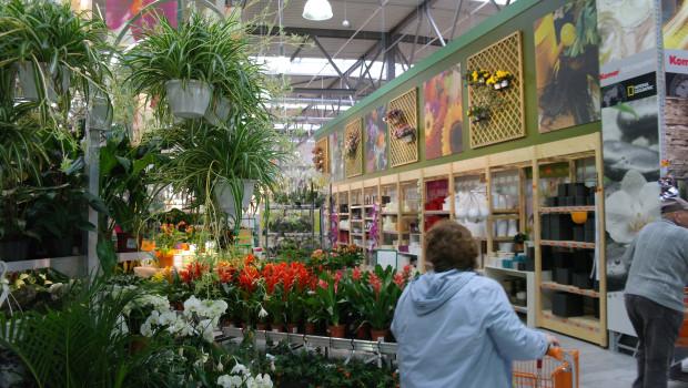In den Gartencentern der Hornbach-Märkte gibt es ab sofort keine Produkte mehr, die Glyphosat, Neonicotinoide und bienengefährdende Wirkstoffe enthalten.