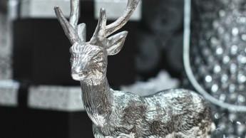 Neue Sagaflor-Eigenmarken für Accessoires und Winter