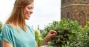 Die neue Lust aufs Gärtnern hält an