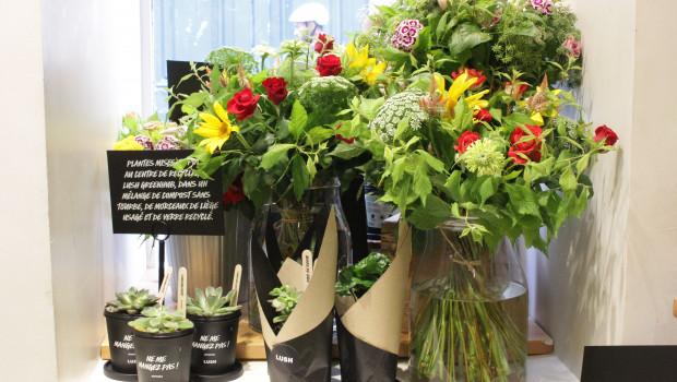 Das Sortiment des neuen Pop-up-Stores von Lush umfasst Schnittblumen und Topfpflanzen.