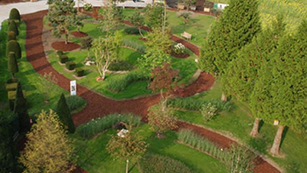 Ihren Schaugarten in München hat die Hamburger Baumschule Lorenz von Ehren im September eingeweiht.