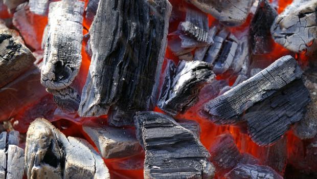 Mit einem neuen Verfahren kann das Thünen-Institut die Holzarten nachweisen, aus denen Grillholzkohle produziert wurde.