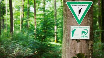 Zwei Drittel des Waldes in Deutschland sind PEFC-zertifiziert