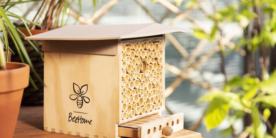 Quedlinburger Saatgut, Bee Home