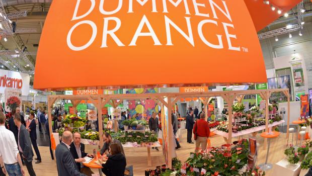 Dümmen Orange war mit einem großen Stand in Halle 2 auf der IPM 2016 vertreten. Im Wettbewerb Neuheitenschaufenster hat das Unternehmen eine Auszeichnung erhalten.