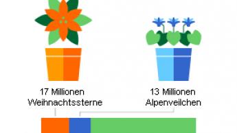 Zierpflanzen: Deutlich weniger Produzenten, etwas weniger Fläche