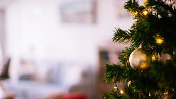 Obi verschenkt Weihnachtsbäume