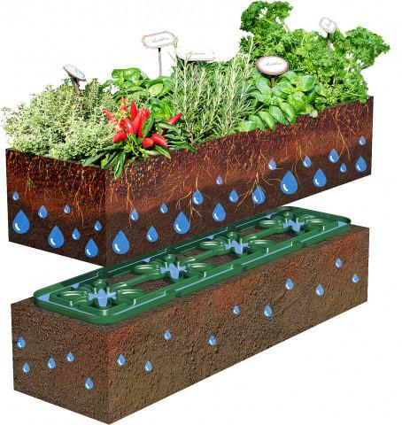 Flora Wassersparsystem, Otto Graf