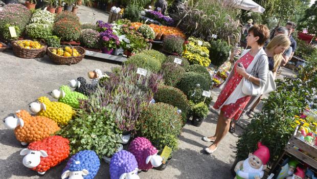 Auf der zweitägigen Endverbraucherveranstaltung Tag des Gartens wurden wieder 15.000 Besucher gezählt.