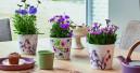 Florale Aquarellmotive