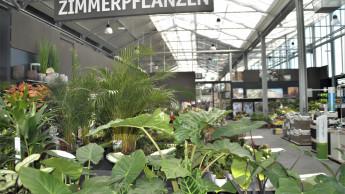 """""""Die grüne Branche nutzt die guten Bedingungen zu wenig für sich"""""""